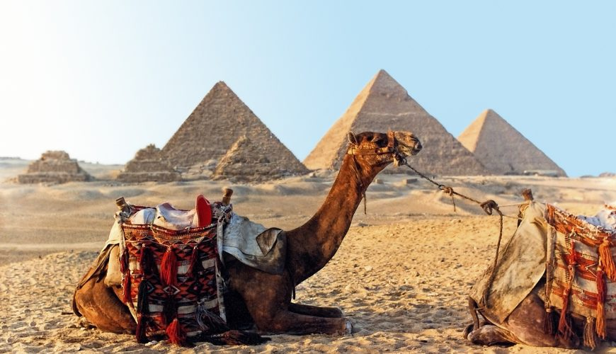 Eastern Tourism - Full-Day Trip to Cairo & Giza by Bus From Hurghada